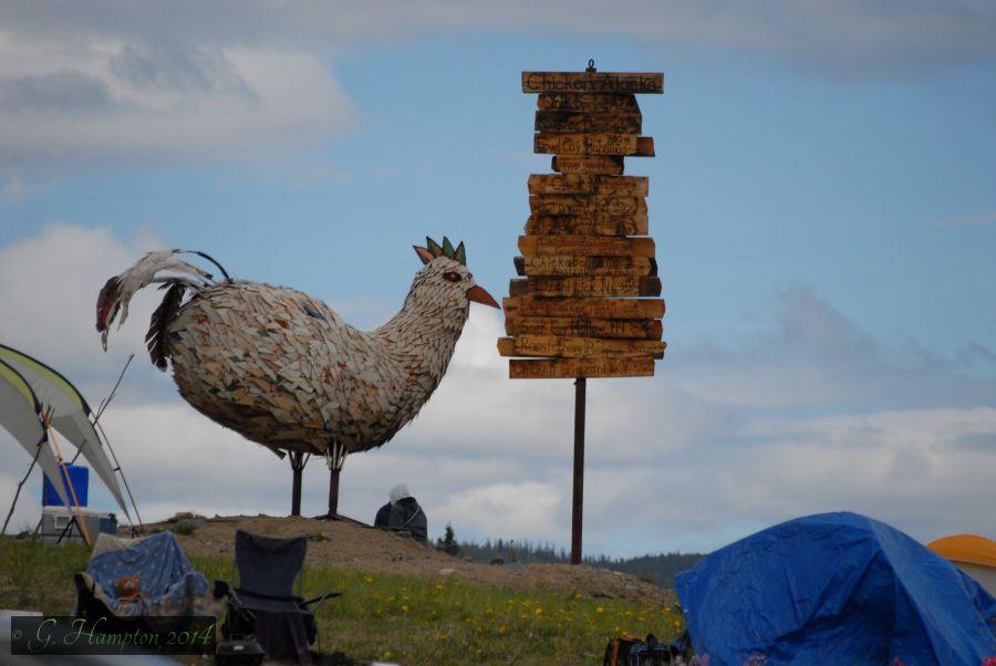 A Fowl Adventure 2014 (4/6)