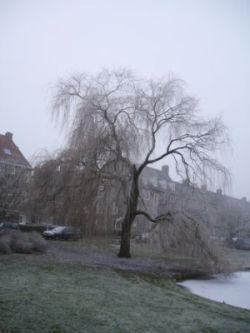 winterboom.jpg
