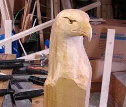 bald-eagle-kop.jpg