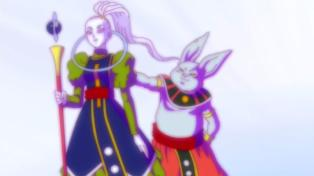 Why so blurry, Fat Beerus?
