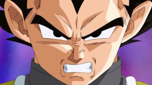 Vegeta hates every moment of this.