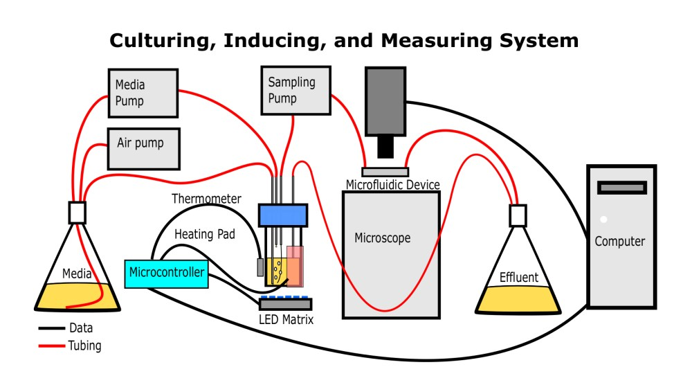 medium resolution of this simplified diagram shows how the apparatus should be assembled when it is used to culture illuminate and measure optical properties of the microbes