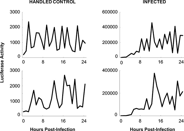 Quantitative Measurement of the Immune Response and Sleep