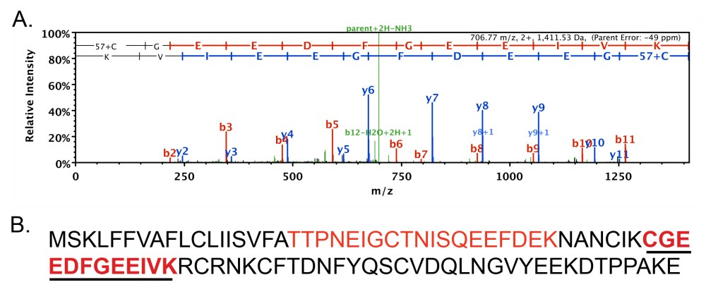 medium resolution of figure 1 latrodectin peptide identified from black widow venom using mass spectrometry a representative spectra one of 43 detected via ms ms portion