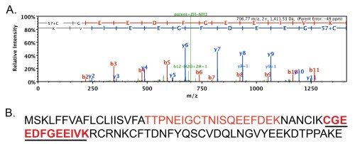 small resolution of figure 1 latrodectin peptide identified from black widow venom using mass spectrometry a representative spectra one of 43 detected via ms ms portion