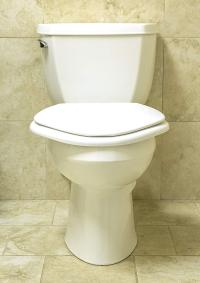 Big John Classic Toilet Seat - $79.0000 | OJCommerce