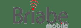 Cloud Gate Media - Digital Marketing Agency - Briabe Mobile