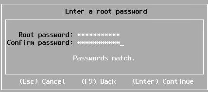 Install vSphere 6.7 - Passwords