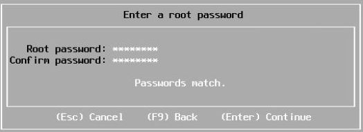 Install vSphere 7.0 - Enter Root Password