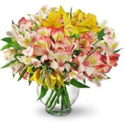 Diagram Of Perfect Flower Lily Guitar Neck Software Peruvian Lilies Miami Fl Florist