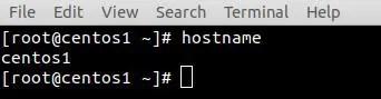 verify-hostname-centos