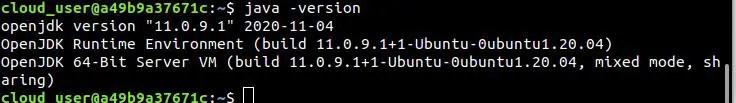 check-java-runtime-enironment-ubuntu-20.04