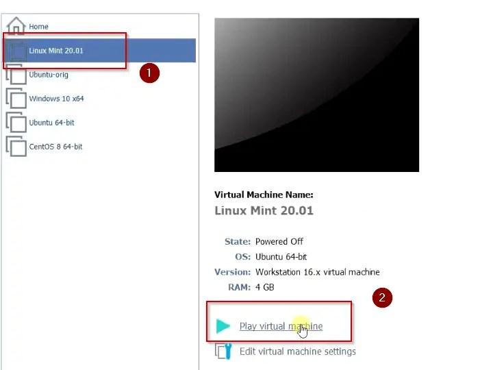 Play Linux mint 20.01 virtual machine 1