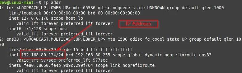 check Ip address Linux mint