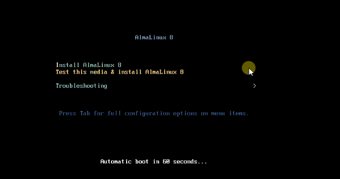 Install-AlmaLinux-options