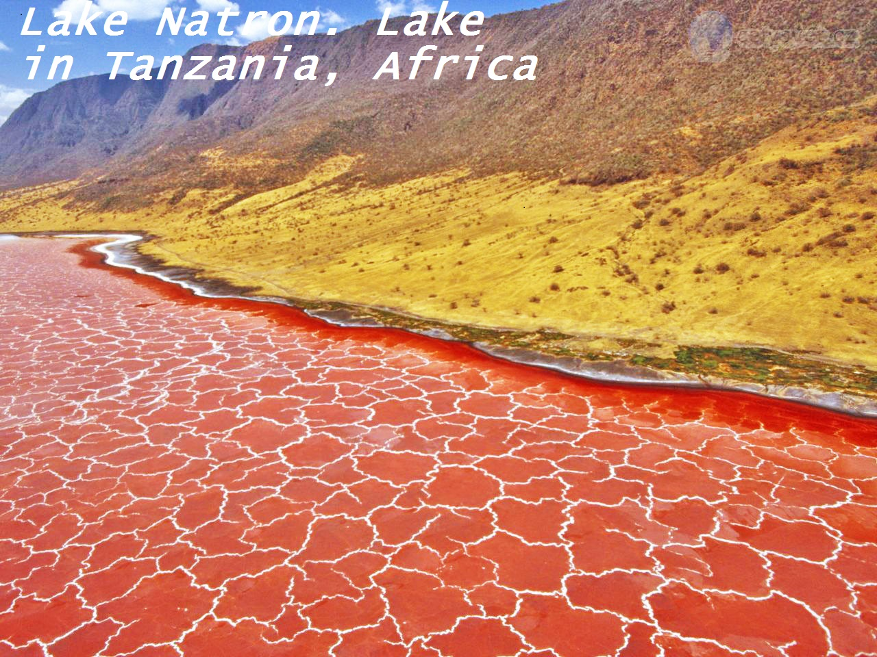 Travel: 10 amazing pics of Lake Natron, the Mummifying Blood Waters of Tanzania  (Lake That Turns Animals to Stone)