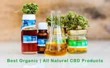 Best Organic _ All Natural CBD Products Featured Image