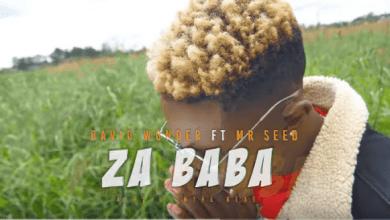 Photo of Video: David Wonder ft Mr Seed – ZA BABA