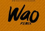 Audio: Mwasiti Ft Sebadon - WAO REMIX