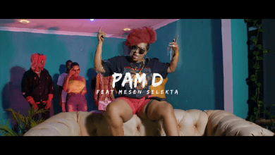 Photo of VIDEO: Pam D Ft Mesen Selekta – UMENIWEZA Mp4 DOWNLOAD