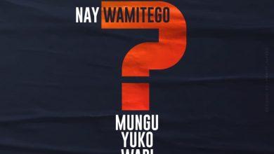 Photo of AUDIO: Nay Wa Mitego – MUNGU YUKO WAPI Mp3 DOWNLOAD