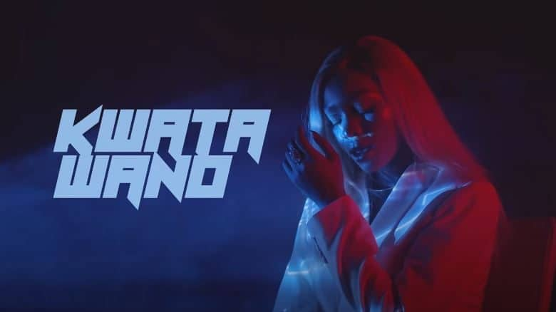 Download Spice Diana – Kwata Wano (Official Music Video) Mp4