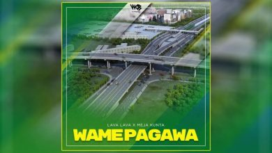 Photo of AUDIO: Lava Lava X Meja Kunta – Wamepagawa Mp3 Download