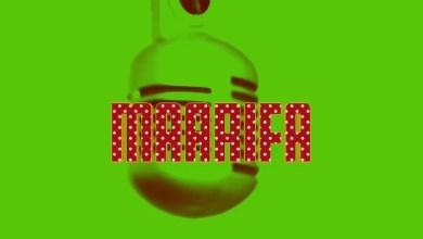 Photo of AUDIO: Maarifa – Maarifa Ya Maarifa 2 Mp3 DOwnload