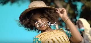 Photo of Di Namite – Tamaduni Mp3 Download