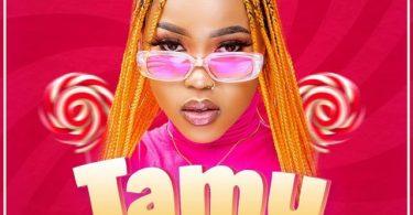 AUDIO: Zee – Tamu Mp3 Download