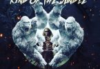 AUDIO: Chidi Beenz - King Of The Jungle Mp3 Download