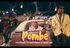 VIDEO: Macvoice Ft Leon Lee & Rayvanny - Pombe Mp4 Download