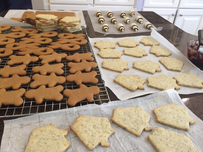many different cookies