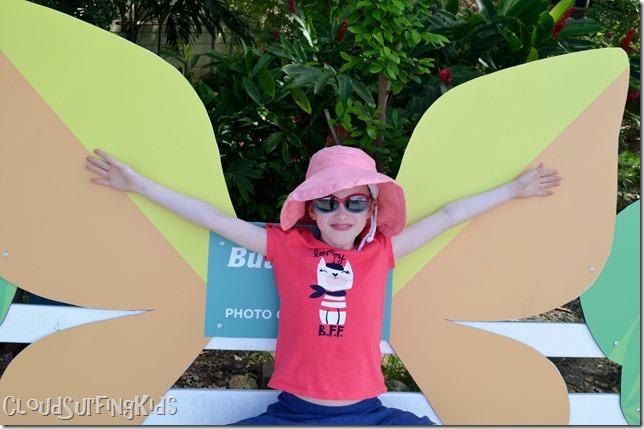 Charlotte Amalie Butterfly Garden Photo Op