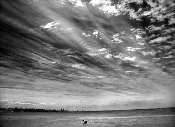 Springer under a spectacular sky CG