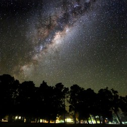 Milky Way over Dryandra2
