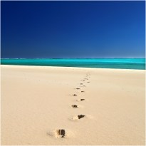 Sandy bay footsteps_s