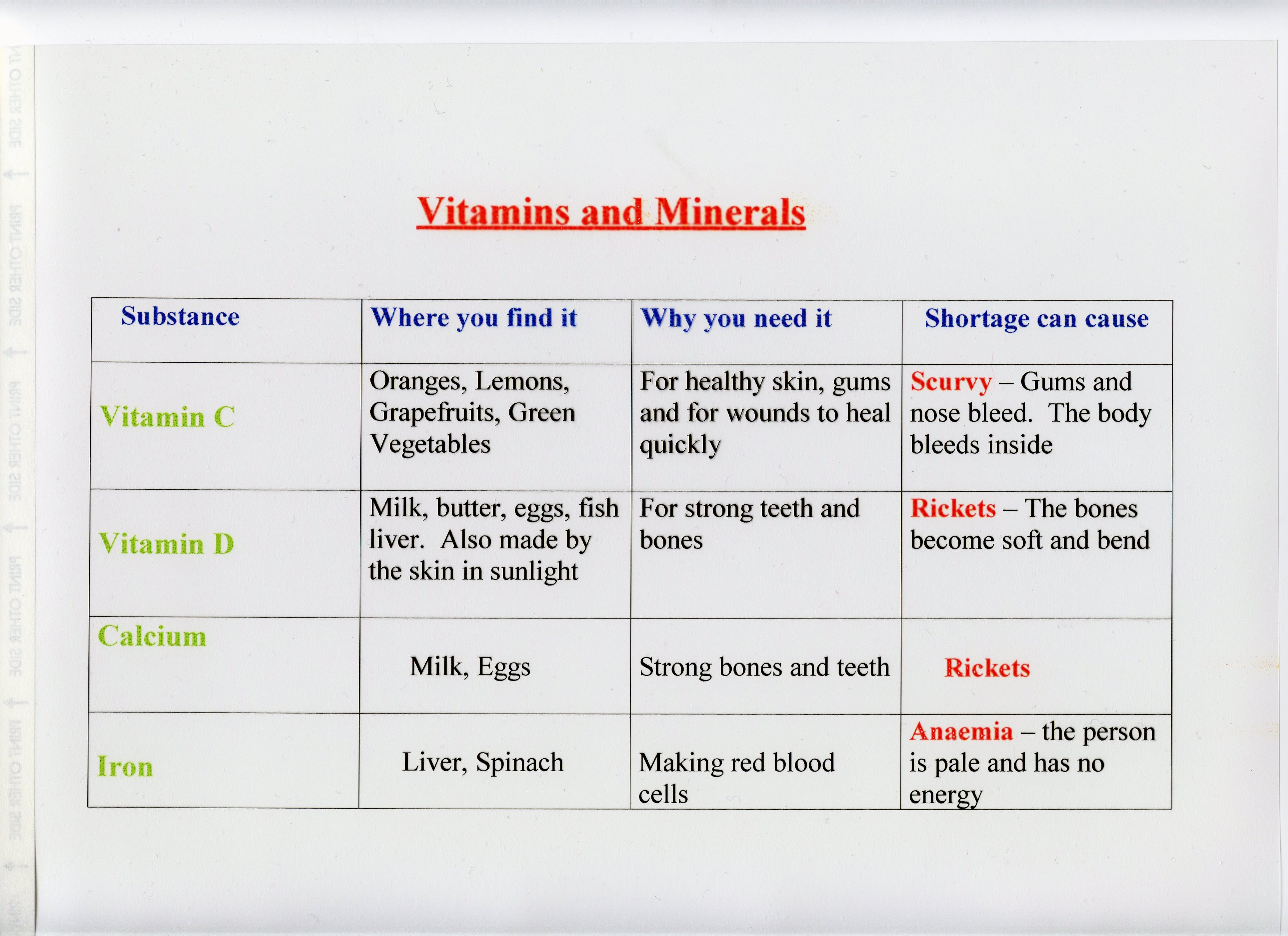 Food And Digestion