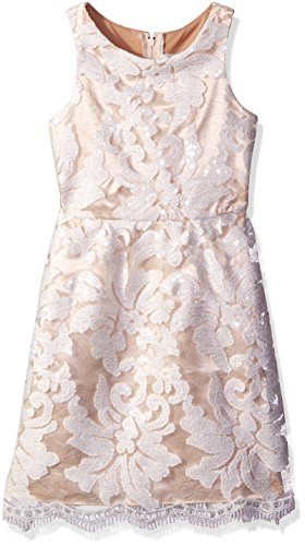 Rare Editions Big Girls' Sequin Embroidered Lace Dress, White/Nude, 7