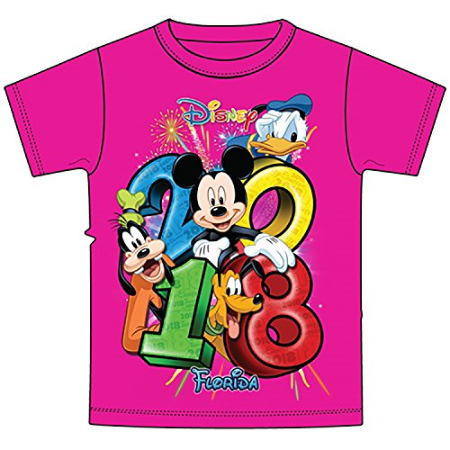 Disney Mickey Mouse Donald Duck Goofy Adult Unisex T Shirt 2018 Stacked Goofy Mickey Donald Pluto Group Tee, (Medium, Pink)