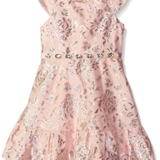 Sweet Heart Rose Little Girls' Metallic Lace Dress with Ruffle Pleated Hem Skirt, Blush, 5