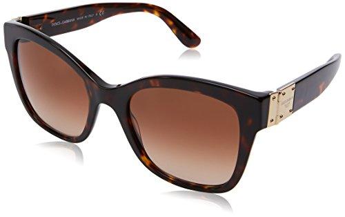 Dolce and Gabbana Havana Round Sunglasses Lens Category 2
