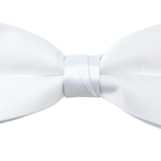 Spring Notion Boys' Pre-tied Banded Satin Bow Tie