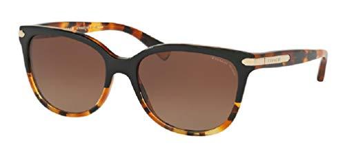 Coach 57M Black Tortoise/Tortoise/Brown Gradient Polarized Cat Eye Sunglasses