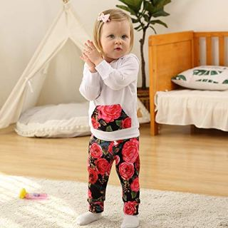 Baby Girls Long Sleeve Hoodie Tops and Flowers Pants Outfit