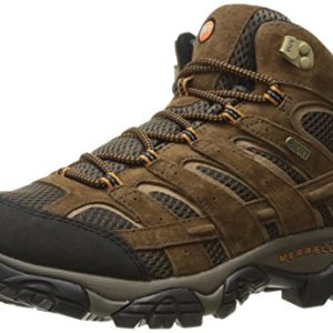 Merrell Men's Moab 2 Mid Waterproof Hiking Boot, Earth