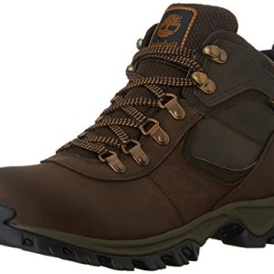 Timberland Men's Mt. Maddsen Hiker, Brown