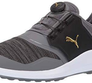 Puma Golf Men's Ignite Nxt Disc Golf Shoe, Quiet Shade-puma