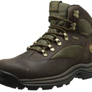 Timberland Men's Chocorua Trail Mid Waterproof, Brown/Green