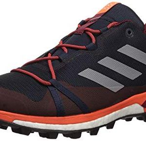 adidas outdoor Men's Terrex Skychaser LT Athletic Shoe, Legend Ink/Grey